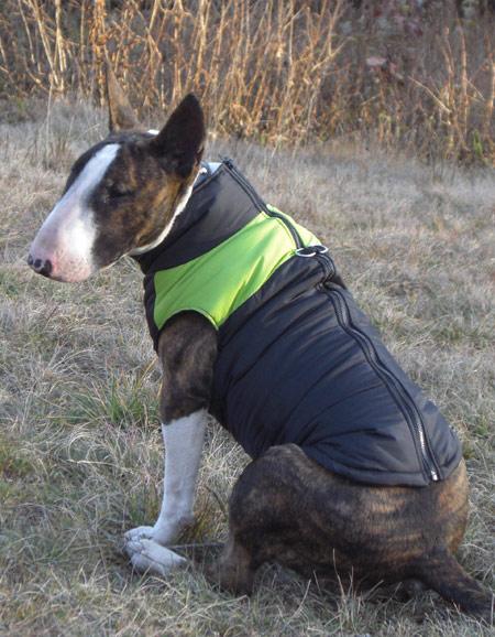 Il documento stato spostato for Recinto per cani taglia grande