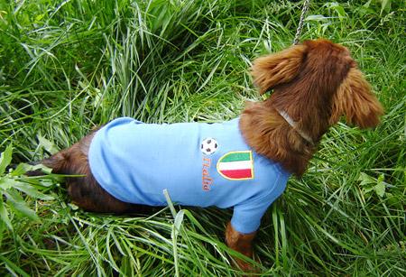 Maglietta dell'Italia per Bassotti