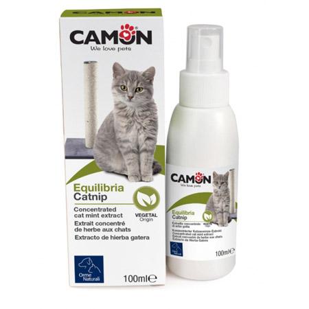 Attrattivo per Gatti Catnip Spray