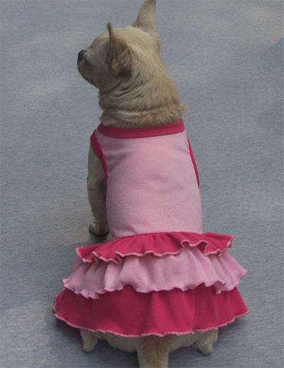Vestito Ipanema Rosa, per cani di taglia piccola e media