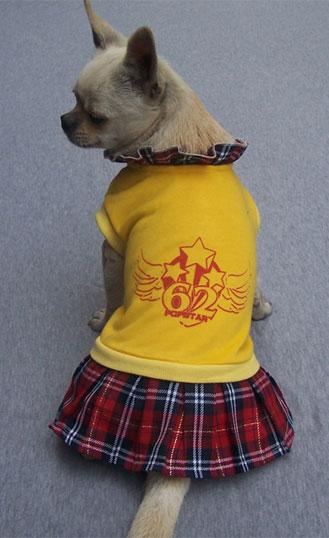 Vestito per cani con Kilt Scozzese Chiaro
