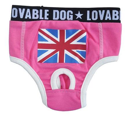 Slip per cani Rosa con bandiera inglese