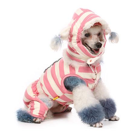 Tutina Rosa per cagnoline con scaldacollo e cappello