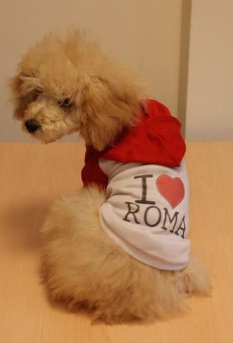 Maglietta Rossa ROMA con cappuccio