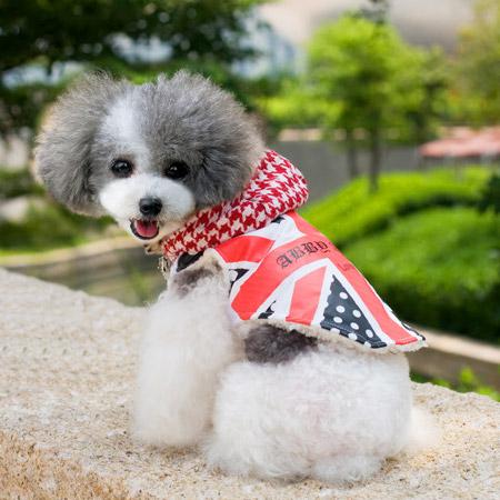 Cappottino per Cani England
