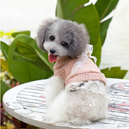 Maglione in lana per Cagnolina Jennifer Cipria