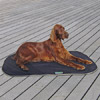 Tappetino Rinfrescante per Cani