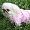 Camicia Rosa a quadretti per cani