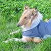 Mantellina Jeans per cani taglia grande